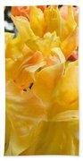 Gallery Fine Art Prints Yellow Orange Rhodies Beach Towel