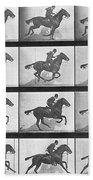 Galloping Horse Beach Towel by Eadweard Muybridge