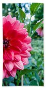 Garden Dahlia Beach Towel