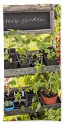 Garden Herb Nursery Beach Towel