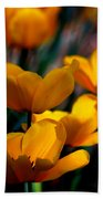 Garden Tulips Beach Towel