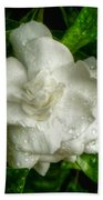 Gardenia In The Rain Beach Towel