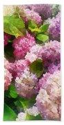 Gardens - Pink And Lavender Hydrangea Beach Towel