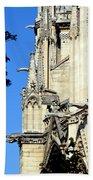 Gargoyles Of Notre Dame De Paris Beach Towel