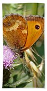 Gatekeeper Butterfly Beach Towel