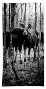Gathering Of Moose Beach Towel by Bob Orsillo