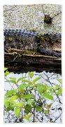 Gator Camoflage Beach Towel
