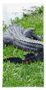 Gator In The Grass Beach Towel
