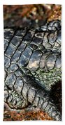 Gator Manicure Beach Towel