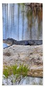 Gator On The Mound Beach Towel