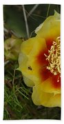 Gattinger's Prairie Clover And Prickly Pear Flower Beach Towel