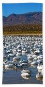Geese At Bosque Del Apache Beach Towel by Kurt Van Wagner