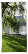 Geese In Central Park Nyc Beach Towel