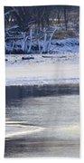 Geese On Ice Beach Towel