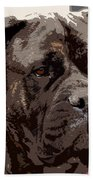 Gentle Gina  Beach Towel