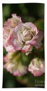 Geranium Flowers Beach Sheet