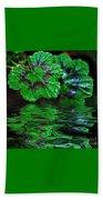 Geranium Leaves - Reflections On Pond Beach Towel