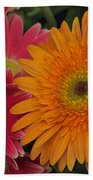 Gerbera Beach Towel