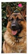 German Shepherd Dog Beach Sheet