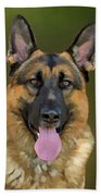 German Shepherd Portrait II Beach Towel