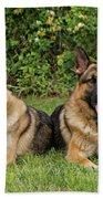German Shepherds - Mother And Son Beach Towel
