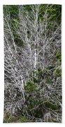 Ghost Trees Beach Towel
