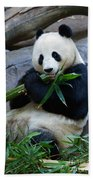 Giant Panda Beach Towel