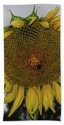 Giant Sunflower Beach Towel