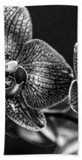 Gift Of Flowers Beach Sheet