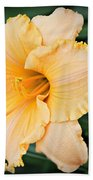 Gild The Lily Beach Towel