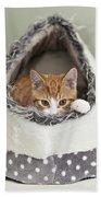 Ginger Kitten In An Igloo Beach Towel