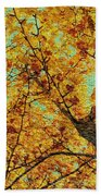 Ginkgo Tree  Beach Towel
