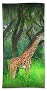Giraffe In Florida Beach Towel