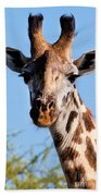 Giraffe Portrait Close-up. Safari In Serengeti. Beach Towel