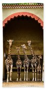 Giraffes Lineup Beach Towel