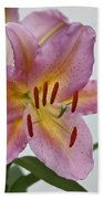 Girosa Lily Beach Towel by Sandy Keeton
