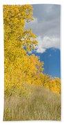 Glacier Fall Color Ridge Beach Towel