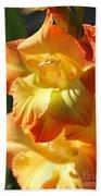 Gladiolus Named Halloween Beach Towel