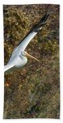 Gliding Pelican Beach Towel