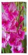 Glorious Gladiolus Beach Towel
