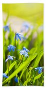 Scilla Siberica Flowerets Named Wood Squill  Beach Towel