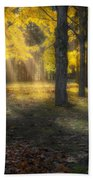 Glowing Maples Square Beach Towel