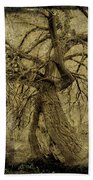 Gnarled And Twisted Tree With Crow Beach Towel