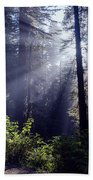 God Rays Through The Fog Beach Towel
