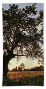 Goddess Tree 2 Beach Towel