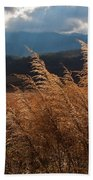 Gods Paintbrush IIi Beach Towel