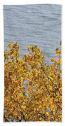 Gold Leaves Beach Towel