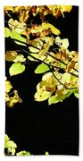Gold On Black Beach Towel