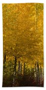 Golden Aspens Beach Towel by Don Schwartz