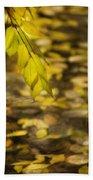 Golden Autumn Colour Foliage On Rainy Pond Beach Towel